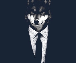 bad, suit, and wolf image