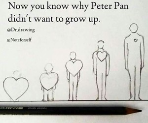 fairytale, peter pan, and true image