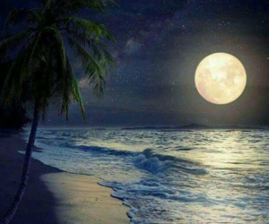 moon, beach, and nature image