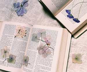 books, chill, and flowers image