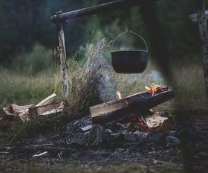 bonfire, cooking, and forest image