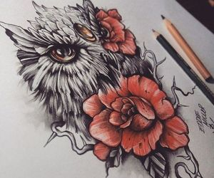owl, rose, and drawing image