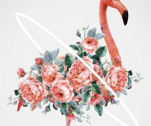 flowers, flamingo, and art image