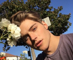 boy, flowers, and froy image