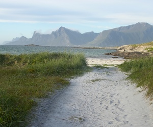 beach, nature, and norway image