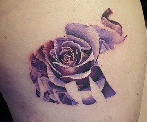 elephant, tattoo, and rose image