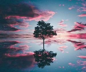 tree, sky, and nature image