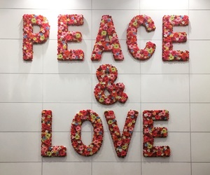 airport, florida, and peace image