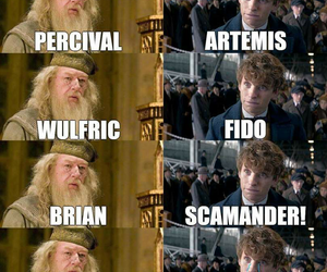 fandom, newt scamander, and harry potter image