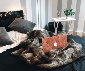 home, apple, and decor image