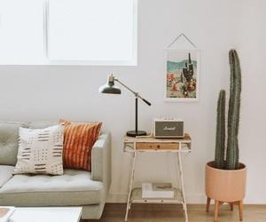 cactus, orange, and pretty image