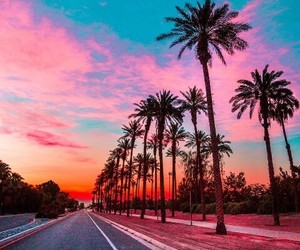 landscape, palm trees, and roads image