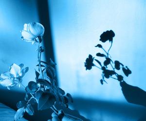 blue, glow, and dark image