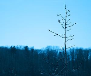 blue, blue sky, and light blue image