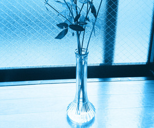 blue, flowers, and light blue image