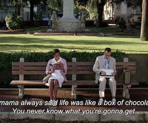 forrest gump, frases, and quote image