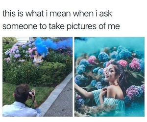 funny, memes, and photography image