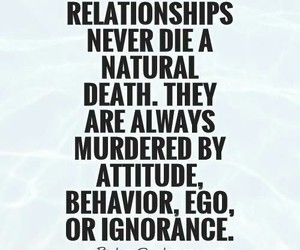 quotes, Relationship, and love image