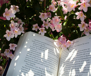 book, tumblr, and flowers image