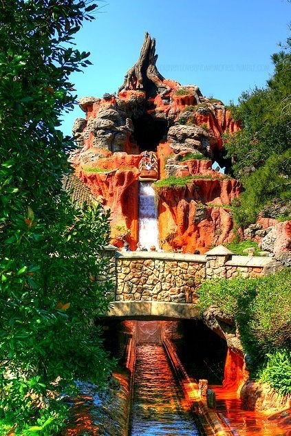 disney, disney world, and splash mountain image