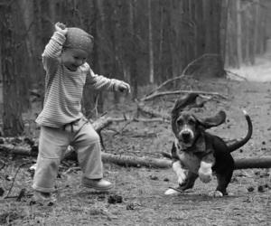 animal, dog, and child image