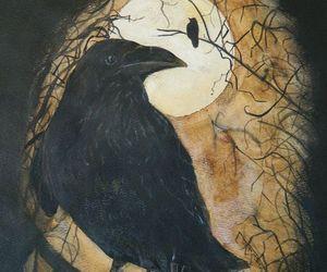 raven's image