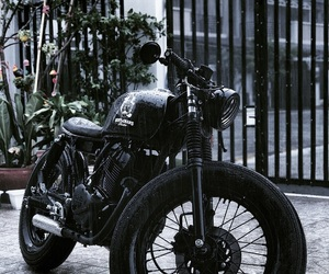 Cambodia, coffee, and caferacer image