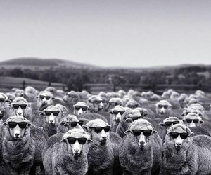 Image by MaRio Argiento