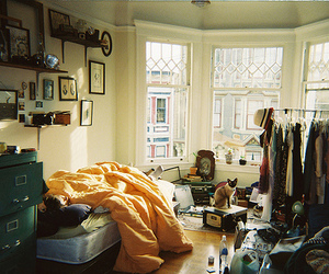 room, cat, and bedroom image