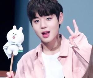 kpop, jihoon, and wanna one image