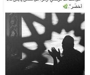2017, الله, and كﻻم image