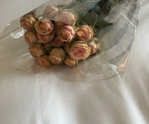 flowers, lovely, and roses.stuff image