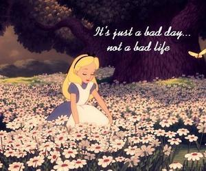 alice, alice in wonderland, and flowers image