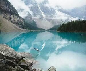 naturaleza, belleza, and paisaje image