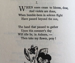 emily dickinson, flowers, and poems image