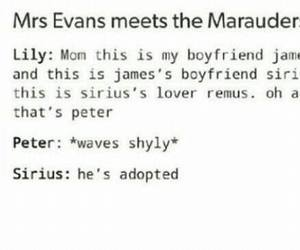 harry potter, the marauders, and lily evans image