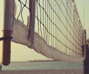 volleyball and net image