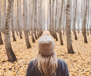 photography, autumn, and adventure image