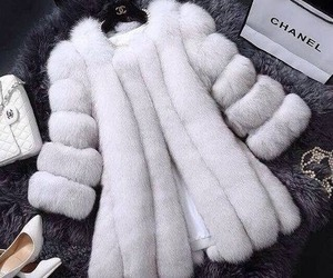 chanel, white, and fur image