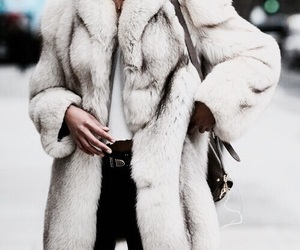 fashion, style, and coat image