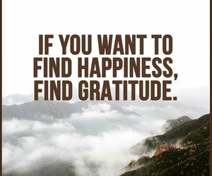 find, gratitude, and happiness image