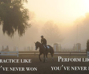 horse, equestrian, and practice image