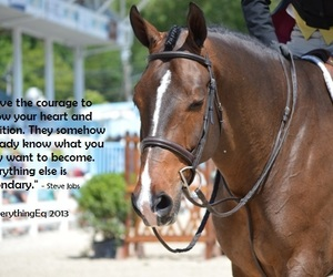 courage, equestrian, and quotes image