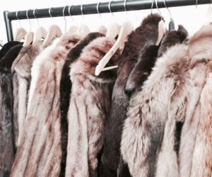 fashion, fur, and coat image