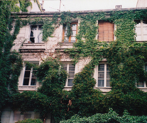 house, green, and film image