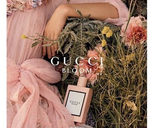 gucci and perfume image