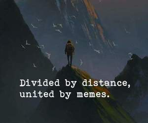meme, memes, and quote image