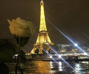 paris, rose, and beautiful image