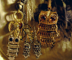 owl, necklace, and gold image
