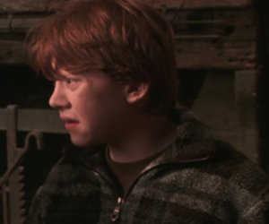 hp, icon, and harry pitter image